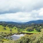 Parque Natural - Coto de Donana © joserpizarro - Fotolia.com